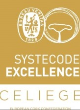 SYSTECODE EXCELLENCE